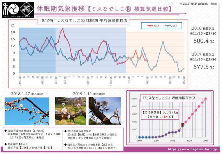 休眠期の気象推移比較【2018冬】 和×夢 nagomu farm