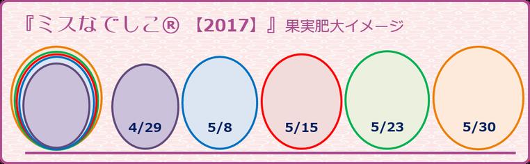 ミスなでしこⓇ果実肥大イメージ【2016】