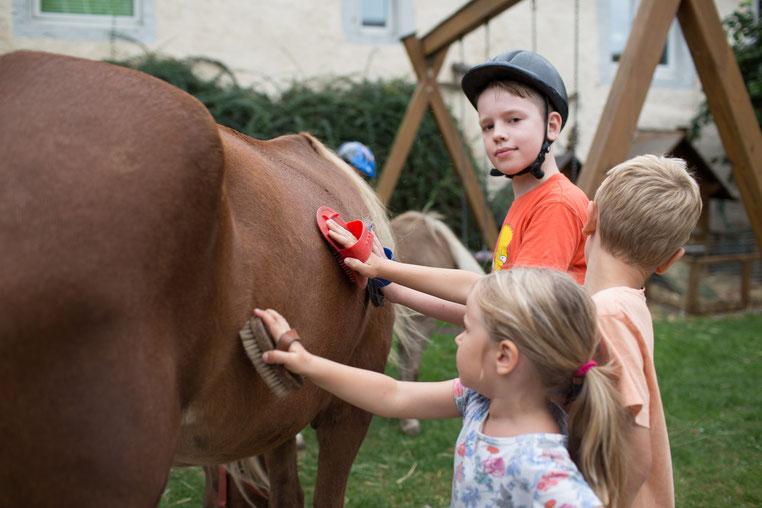 Nach dem Reiten werden die Ponys geputzt!