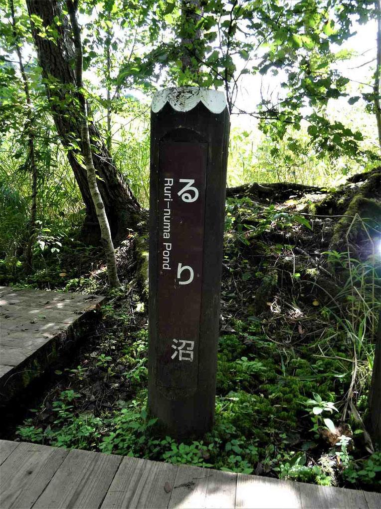 この柱をみたら脇道を探しましょう!
