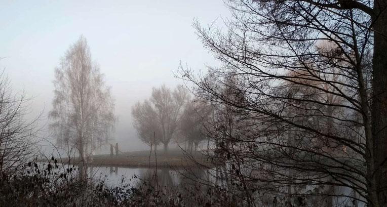 Woog im Nebel