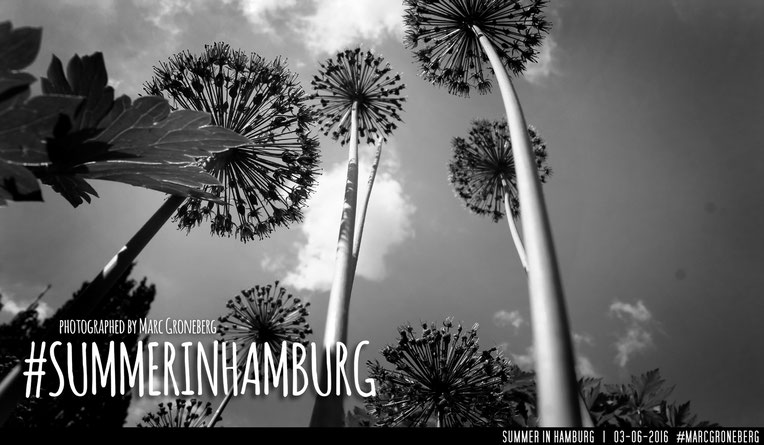 #summerinhamburg | Photo & Edit © by Marc Groneberg