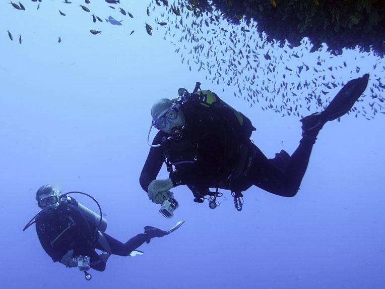 Das einzige Unterwasserfoto, auf dieser HP das nicht von uns beiden ist, es wurde auf dem Tauchplatz Big Brother in Ägypten von Sven Kahlbrock während unserer Safari gemacht. Danke Sven.
