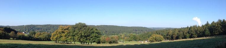 Oberhalb Vicht Ferienwohnung Einstein Stolberg-Vicht, Eifel, Region Aachen, Nationalpark Eifel, Wanderungen, Urlaub für Familien (auch mit Hund)
