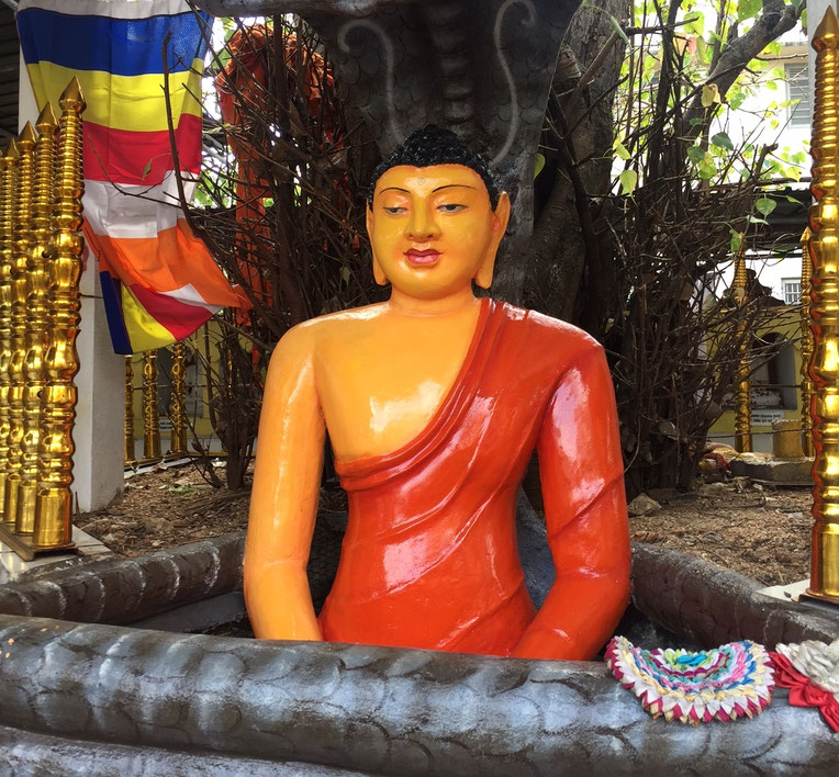 Un autel pour Buddha dans Galle