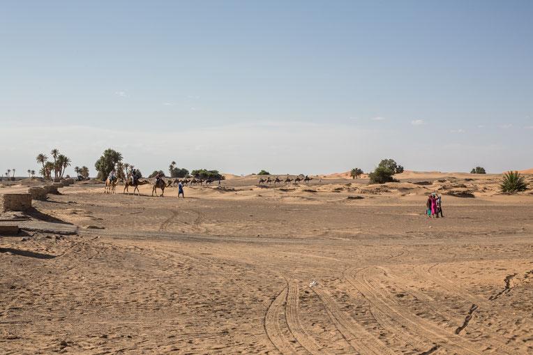 Mit Kamelen unterwegs im Erg Chebbi, gut 40 km von der algerischen Grenze entfernt.