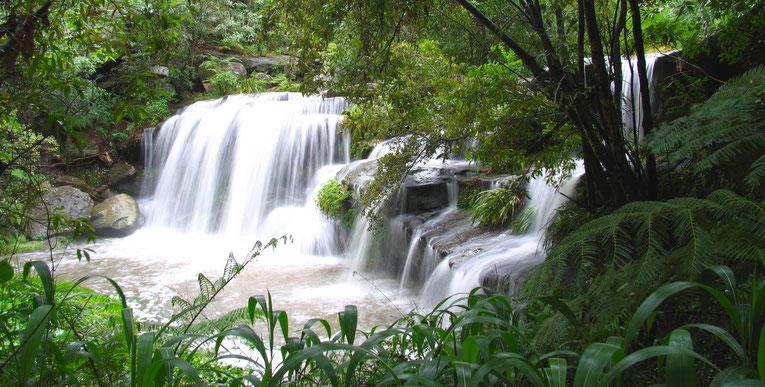 Hunt's Creek Falls, Sydney Australia. Copyright by Graham Howard (c) 2014