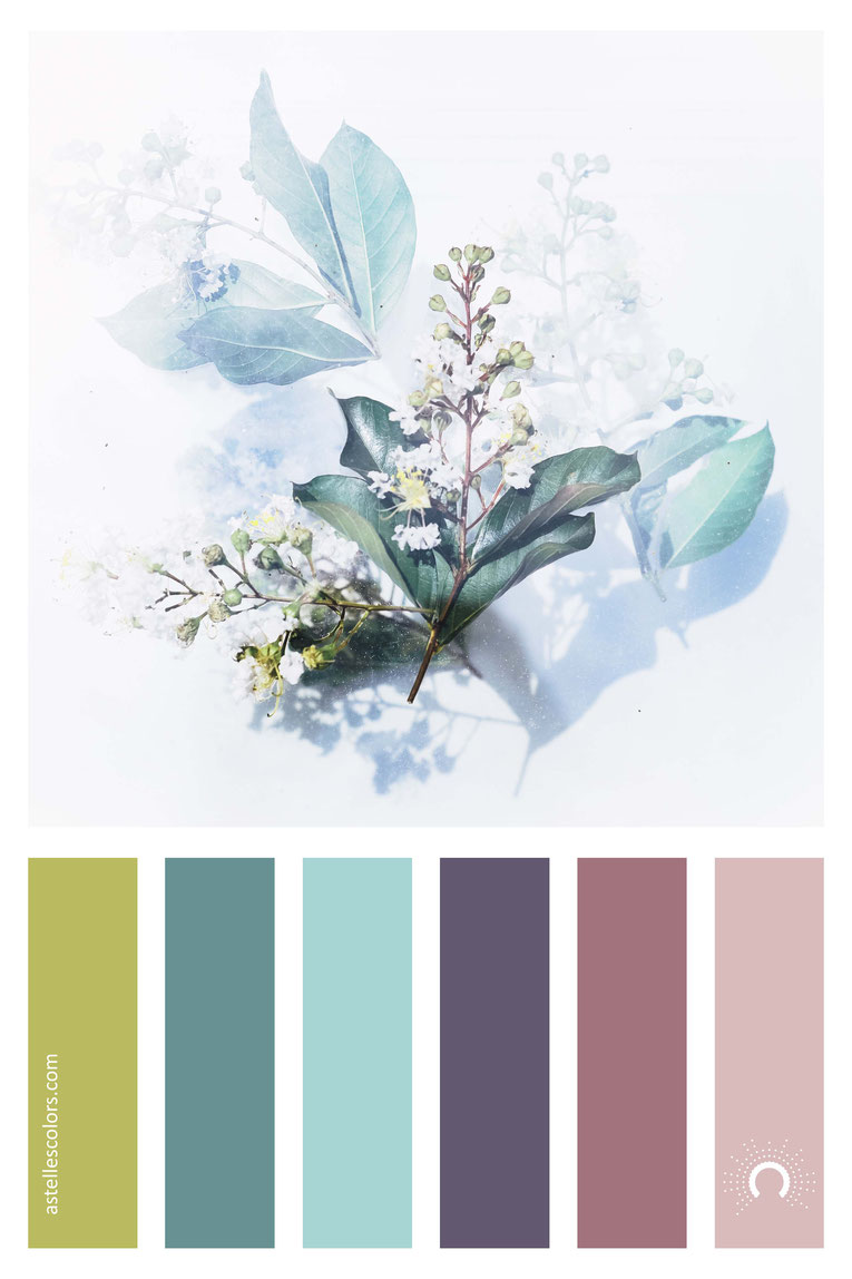 color palette, color combination, color combo, Farbpalette, warm-cool color harmony: green, blue-green, blue, purple, violet, red,