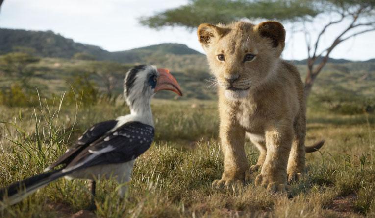 Der junge Simba mit Zazu