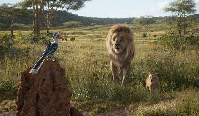 Vater Mufasa und Sohn Simba unterwegs in ihrem Königreich.