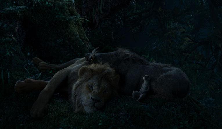 Simba bei Timon und Pumba