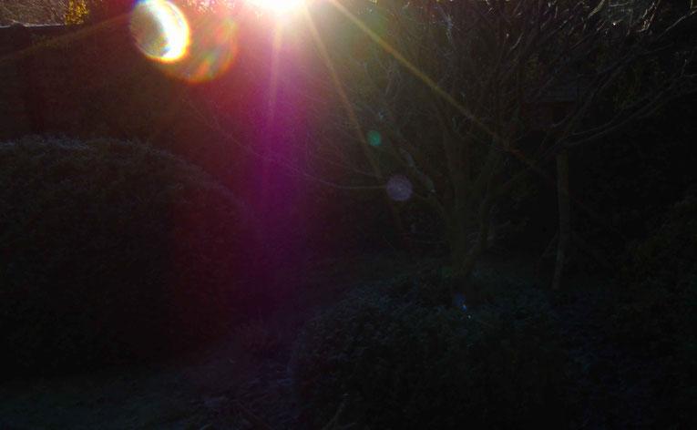 Die Geburt einer Lichtkugel aus der Macht und der Kraft der Liebe, der Samen für neue Möglichkeiten....