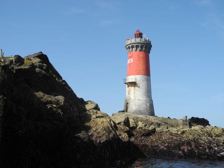 Excursions nautiques, faune, flore, phares au départ du Conquet