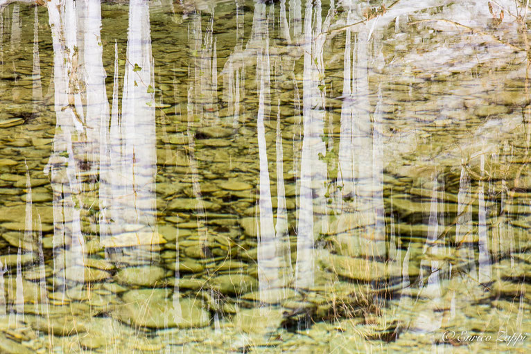 Stalattiti di ghiaccio riflesse sul torrente Acquacheta......diventano stalagmiti!