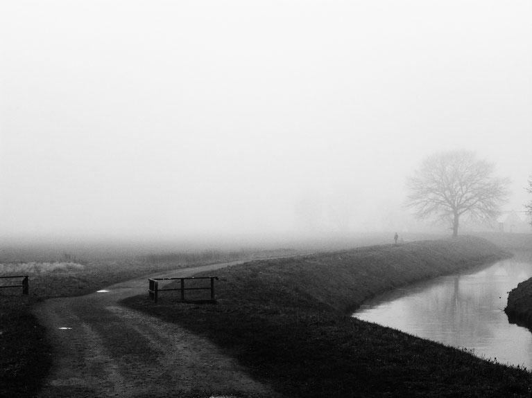 sunday walk, walking, foggy day, fog, mood, Nebelstimmung, Spaziergänger, Sonntagsspaziergang, Nebel, Bach, Baum, Weg, Schwarzweissfotografie, kreative Fotografie, Fototipps