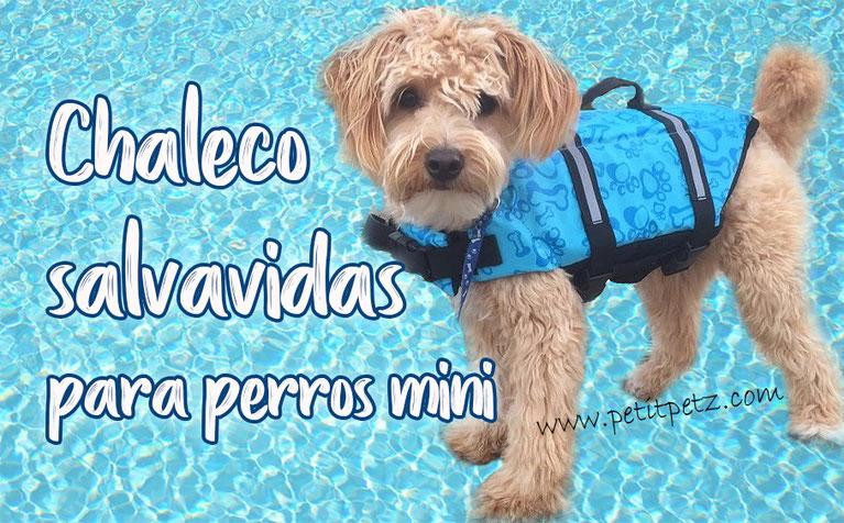 Chaleco salvavidas para perros pequeños