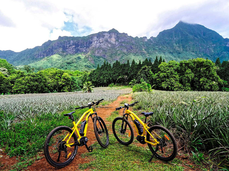 Rent a bike Moorea