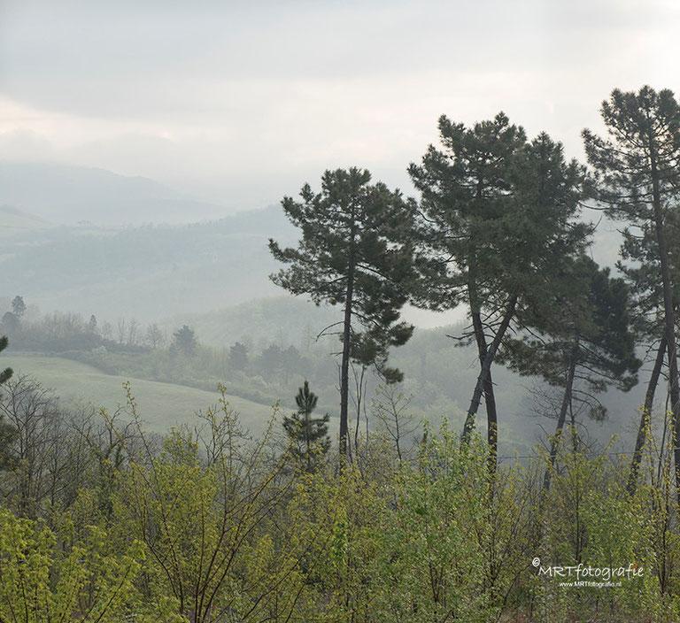 Mist in de Toscaanse heuvels