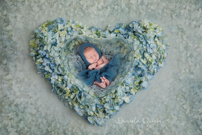 Blumenherz - wohl gebettet - Newbornshooting