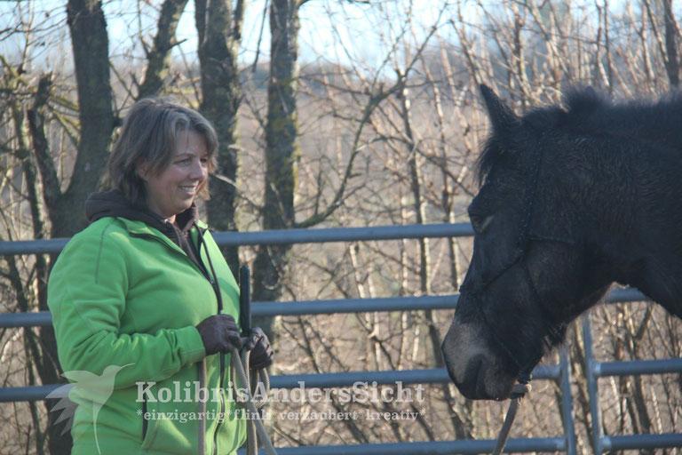 Horsemanship, Pferdeausbildung