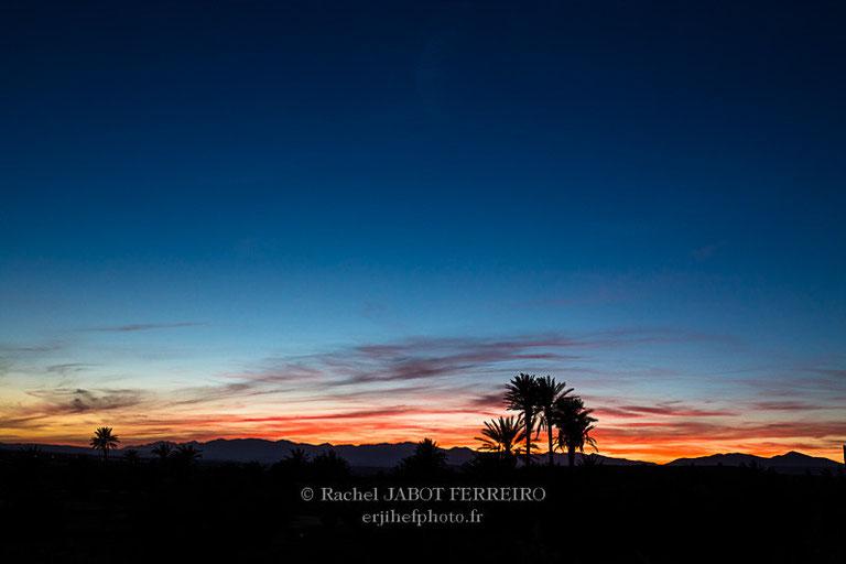 maroc, tazentoute, palmeraie,coucher de soleil, rachel jabot ferreiro, erjihef photo