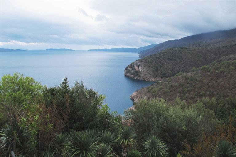 bigousteppes mer ilebalkans croatie palmier olivier montagne