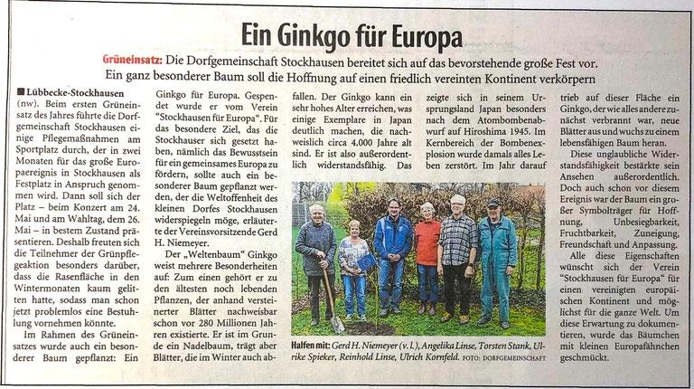 Bericht über die Pflanzung des Stockhauser Europa-Ginkgos (Neue Westfälische, Lokalteil Lübbecke, 26. März 2019)