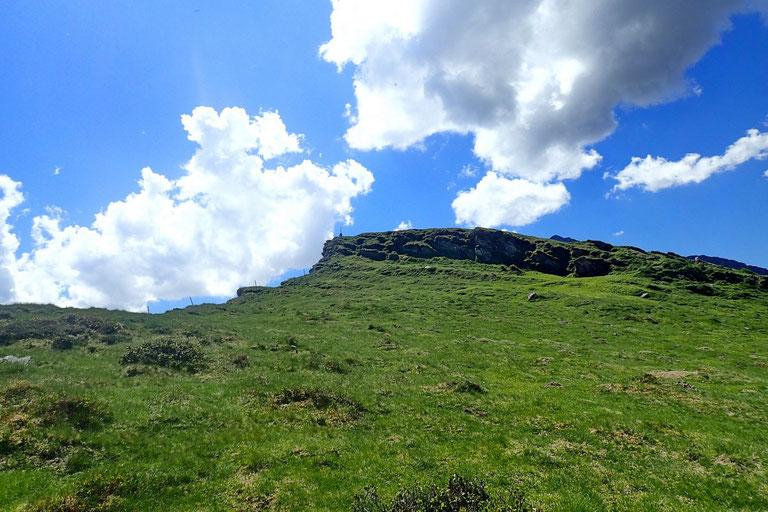 En fait, le sentier a rejoint le versant Nord. Et aucun problème pour continuer. Le cairn du pic est en vue.