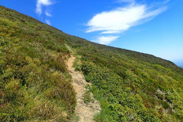 Après le col de Culendous, le sentier passe sur le versant Nord.