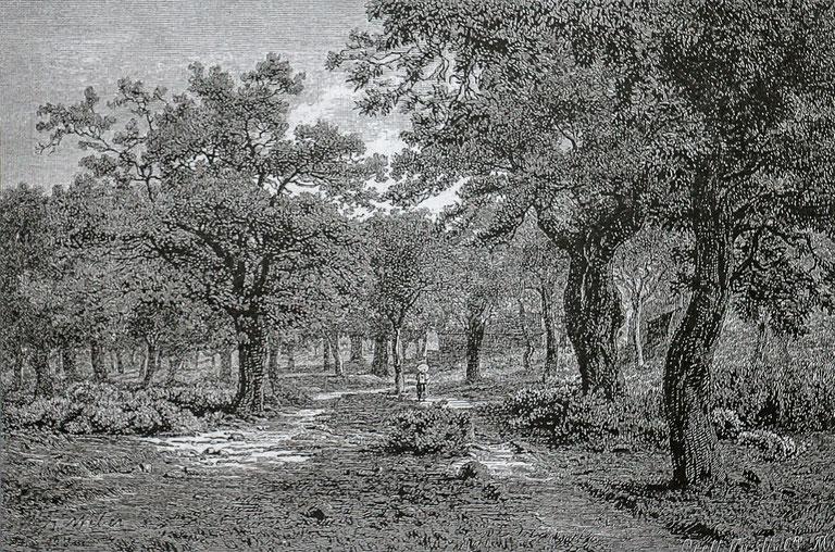 In der Umgebung von Ponte Brolla
