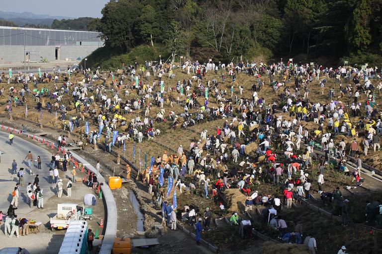 市民植樹祭の様子(2012 年 10 月) 3,000 人の市民が集まり、病院敷地内に森を造った。