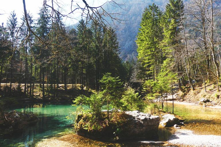 bigousteppes slovénie vallée logar montagne lac