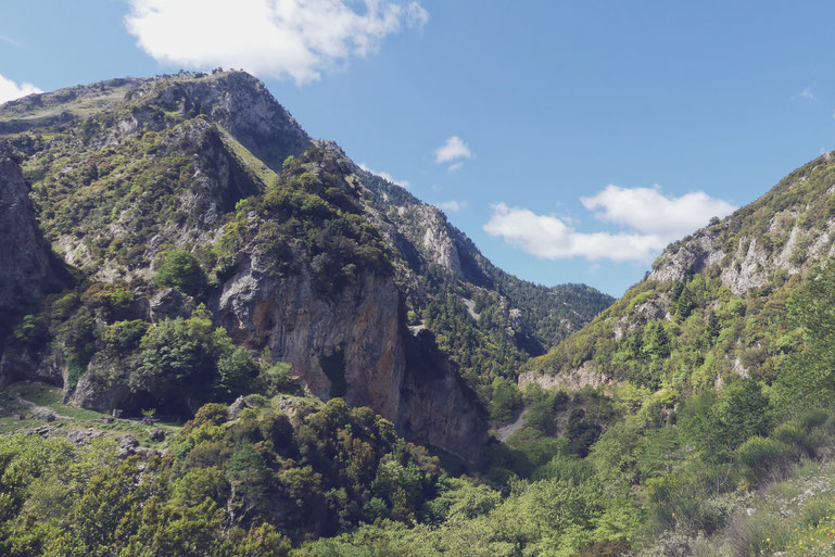 bigousteppes grece balkans tour kalamata col montagne forêt