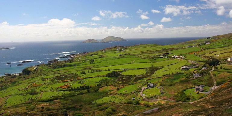 Irlands grüne Küste
