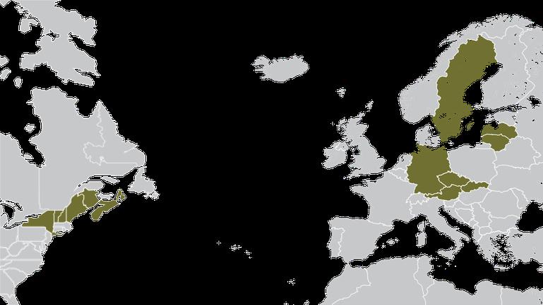 Waldholz Acquisition Karte