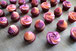 bicoloured cupcakes