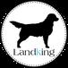 www.landking.org