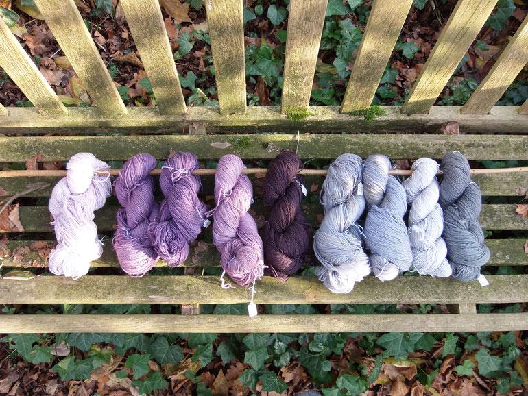 Neun Wollstränge mit Naturfarben gefärbt in den Farbtönen von helllila bis tieflila und hellgrau bis tiefgrau auf einer alten Gartenbank