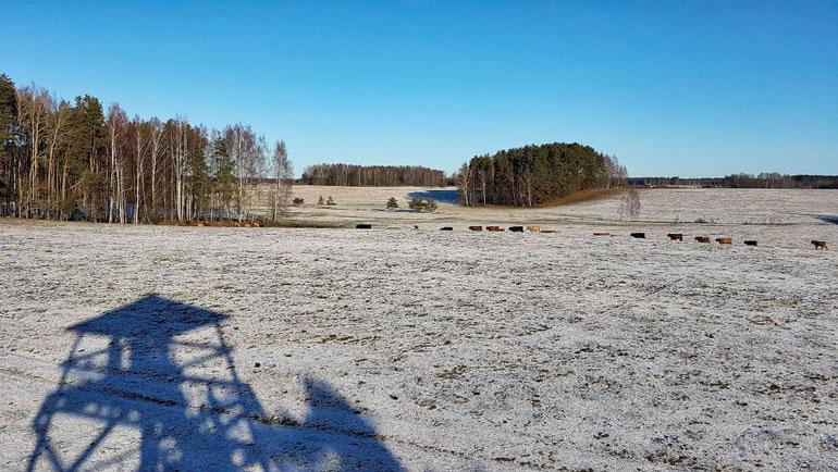 Winter Kayaking _ Latvia _ Dviete Floodplain _ ESCAPERIES