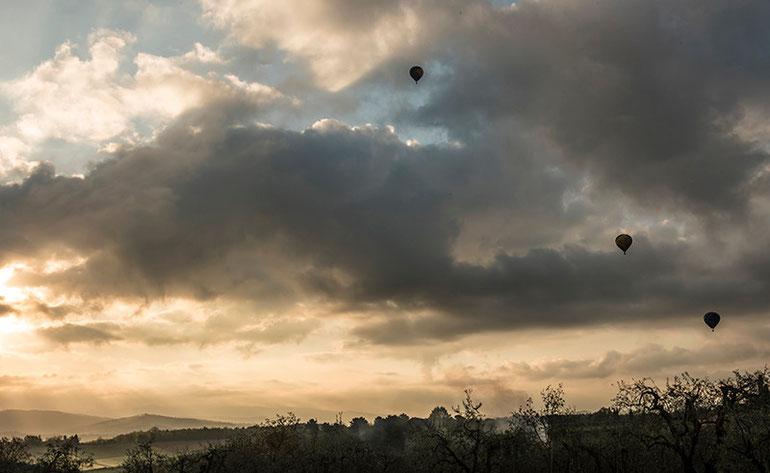 Silhouetten van luchtbalonnen boven de mistvelden