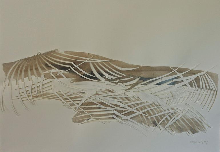atacama  2014    broux   de  noix   ink   paper    70  x  100  cm