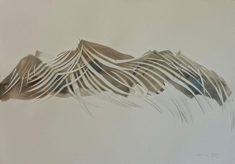 atacama  2014    ink  broux  de  noix  paper   70  x  100  cm