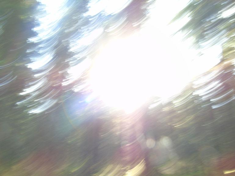 ....boing.....Quelle: www.lichtwesenfotografie.com