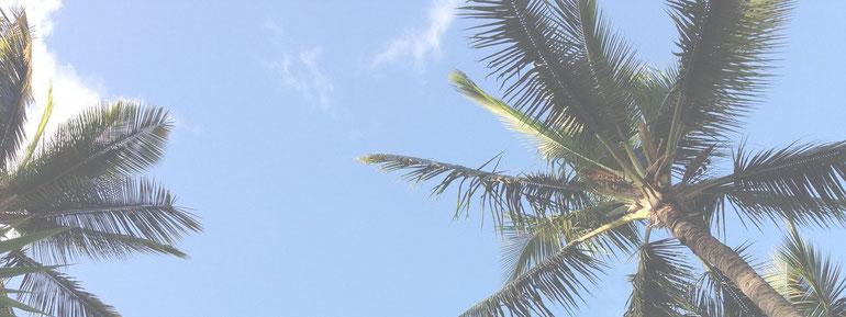 ハワイイアン ロミロミ ルアナ