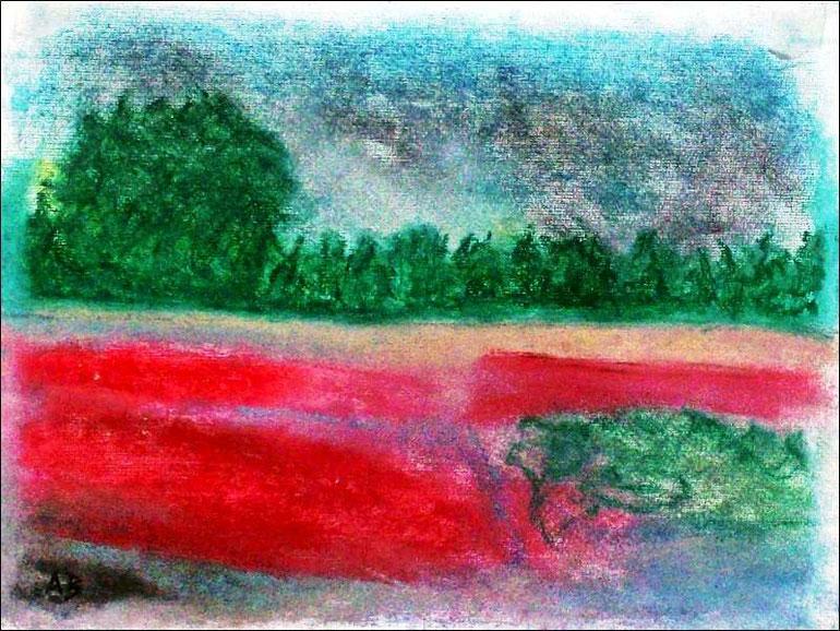 Am Fluss, Pastellmalerei, Fluss,Wald,Bäume, Wiese, Blumen, Feld, Mohn, Wasser, Wolken, Pastellbild, Pastellgemälde, Landschaft