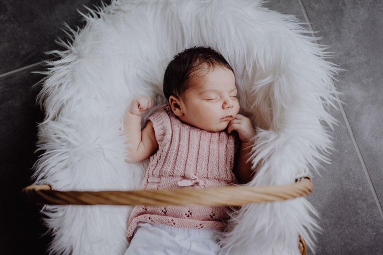 Neugeborenes Babymädchen liegt im Weidenkorb auf weißem Fell fotografiert von Uschi Kitschke aus Kreuzau.
