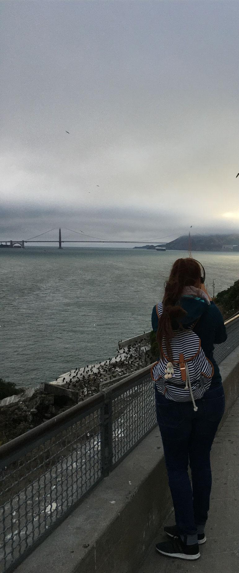und sogar die Golden Gate Bridge konnten wir sehen