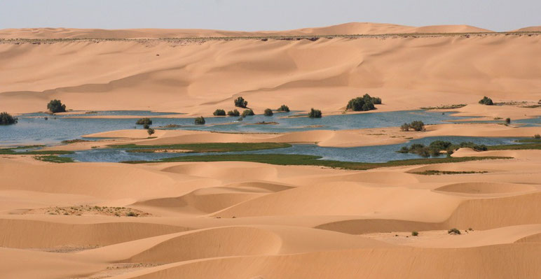 WEST SAHARA - LAAYOUNE