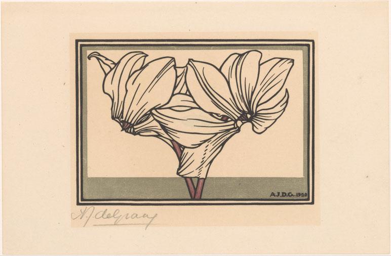 Anna Julie de Graag, Ciclamino, 1920,  Rijksmuseum, Amsterdam
