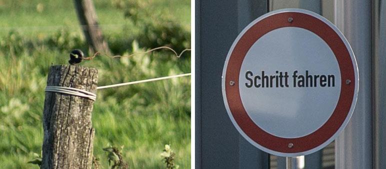 Im Test: 100%-Bildausschnitte mit SONY Alpha 7s2 und LEICA Elmarit-M 2,8/90 mm sowie NOVOFLEX NEX/LEM-Adapter. Foto: Klaus Schoerner